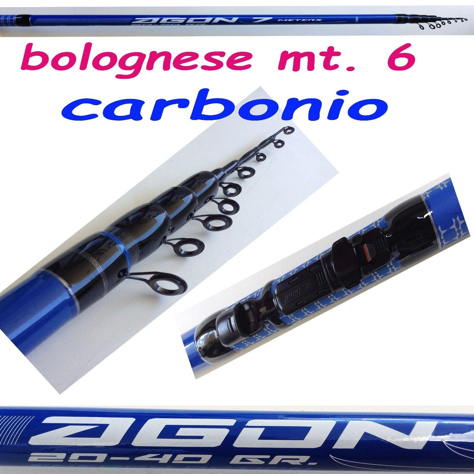 Bolognese 6 metri in carbonio canna pesca con mulinello mare lago fiume carpa kx