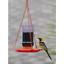 Perky-Pet-253-Oriole-Jelly-Wild-Bird-Feeder thumbnail 3