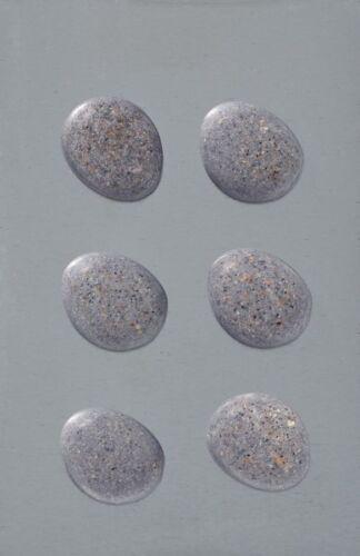6 Walther Neodym Magnete Stein Dekoration Kühlschrank starke Haushaltsmagnete