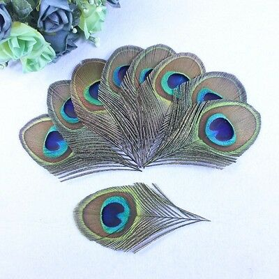 Free shipping,10/20/50/100/200pcs 8-12 cm feathers peacock eye decoration