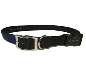 Educator-E-Collar-1-034-Quick-Snap-Double-Buckle-Replacement-Dog-Strap-Black