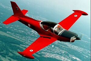 siai marchetti sf 260 trainer light attack aircraft desktop wood rh ebay com