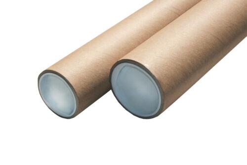 250cm//12,5mm Edelstahl Gebürstet Fliesenschiene-ECO SET Quadratprofil