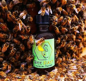 Bee Bait Swarm Lure / Honey bee nasonov pheromone hive trap beekeeping