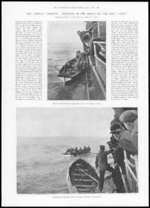 1899-Antique-Print-Stella-R-M-S-Lynx-Rescue-Steamer-Survivors-Disaster-429