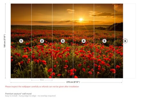 Poppy Field Sunset Wall Mural Wallpaper WS-42432