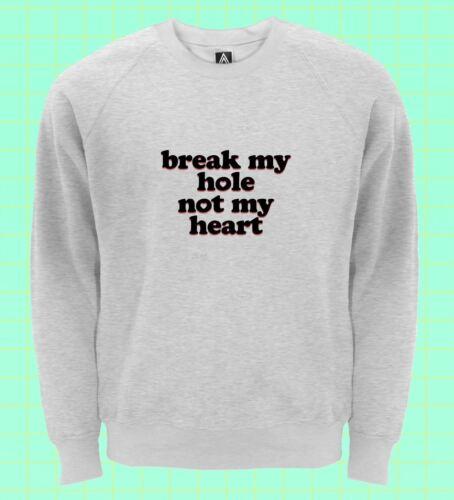 Break My Hole Not My Heart Sweatshirt Gay Pride Jumper LGBT Bottom Sex Slogan