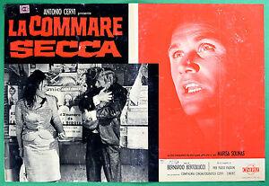 T29-Fotobusta-Die-Commare-Trockene-Bernardo-Bertolucci-Marisa-Solinas-Pasolini-3