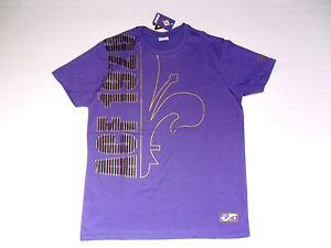 divisa Fiorentina vesti