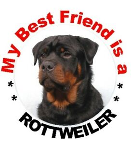 2-Rottweiler-Car-Stickers-By-Starprint-Auto-combined-postage