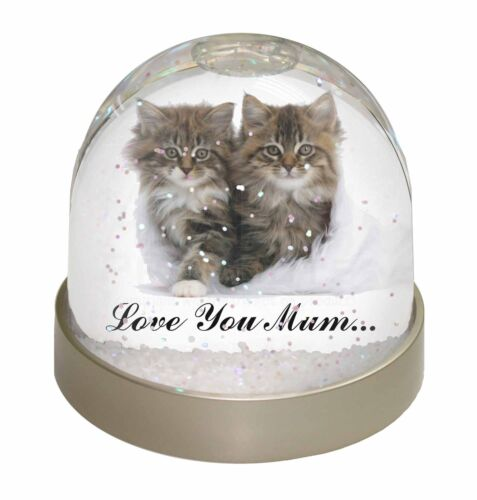 'Love You Mum' Mothers Day Cats Photo Snow Globe Waterball Stocking, AC189lymGL