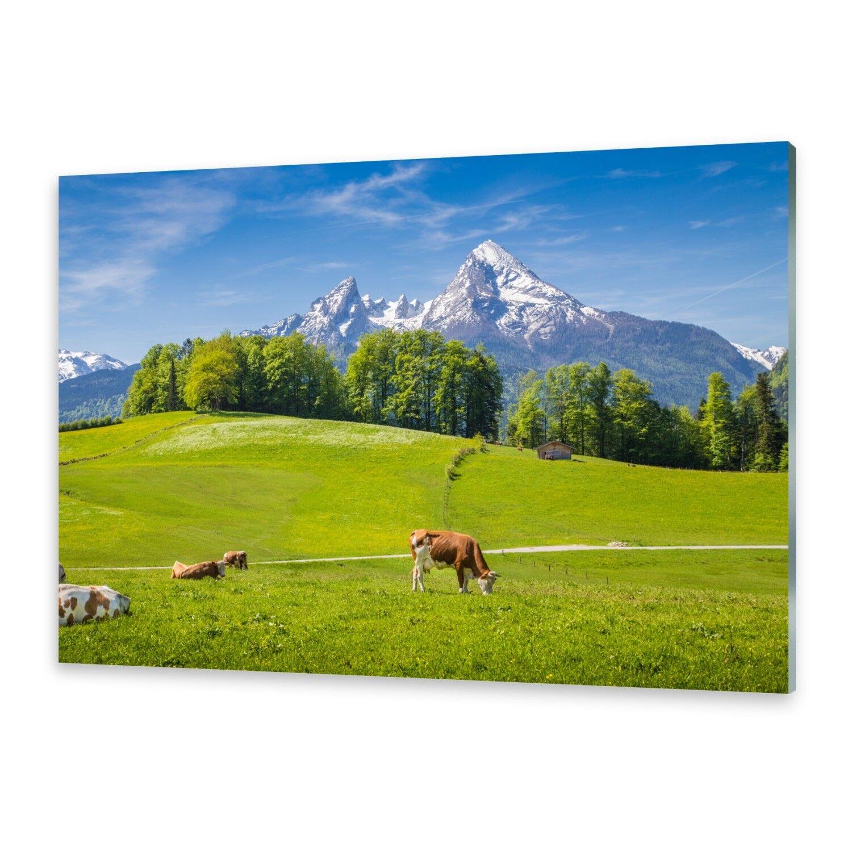 Acrylglasbilder Wandbild aus Plexiglas® Bild Alpen Kühe