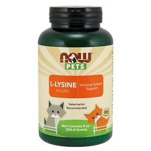 NOW Foods L-Lysine for Cats, 8 oz. Powder