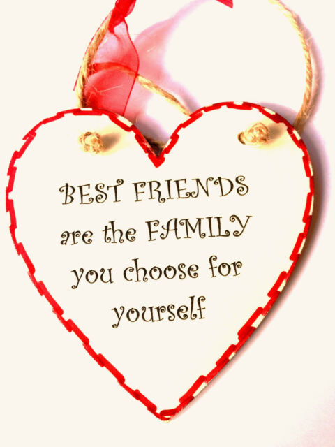 Handmade Wood Plaque Gift Best Friends Are The Family You Choose