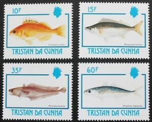 Fishes-stamps-1992-Tristan-da-Cunha-SG-ref-531-534-4-stamp-set-MNH