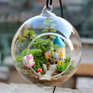 Neu-Haengende-Glasvase-Blumenvase-Pflanze-Glas-Wandvase-Ball-Form