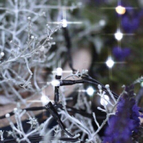 schwarz Best Season 498-18 LED Lichterkette 40er 4m cool white