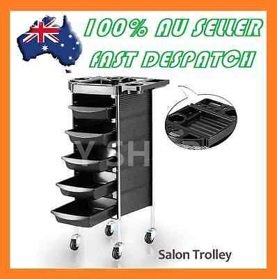 2015 Beauty Spa Hairdresser Coloring Hair Salon Trolley 6 Tier Rolling Storage