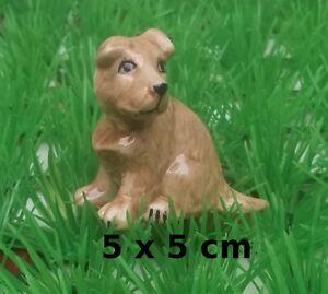 Chien En Céramique,collection,objet De Vitrine, Hond, Dog G-chiens-o P7pvxd37-08004131-987186124