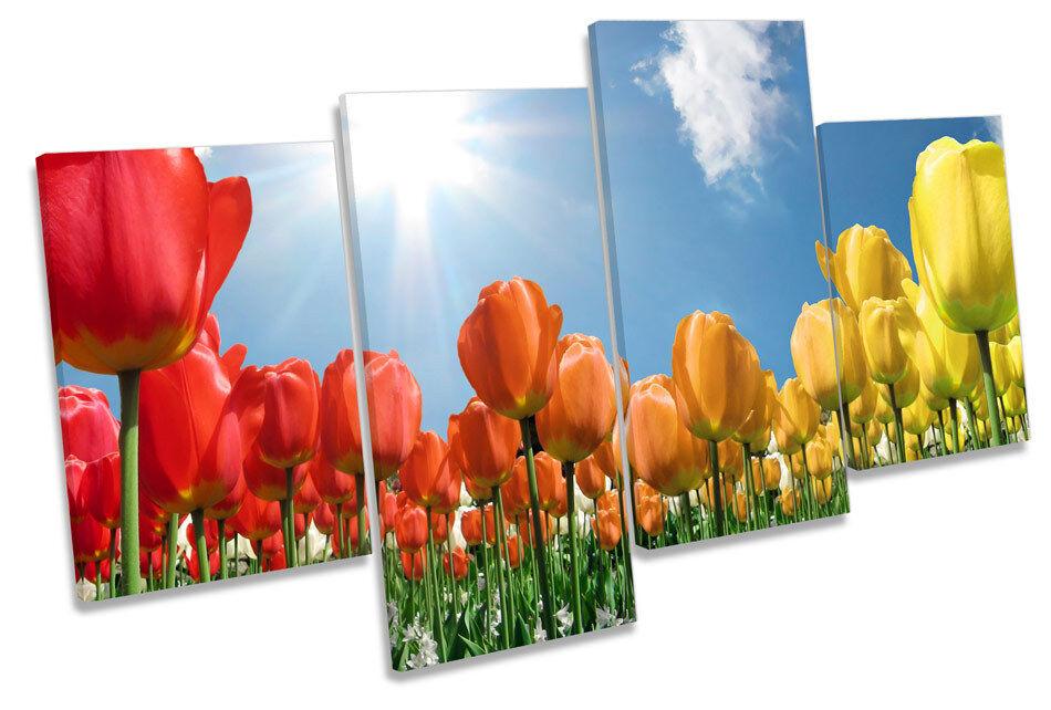 Campo Floral de Flor Floral Campo Lona Pa rojo  Arte Tulipanes Multi Cuadro Enmarcado 190aff