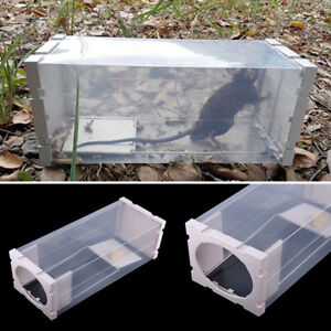Humane-Rat-Trap-Cage-Live-Animal-Pest-Rodent-Mice-Mouse-Bait-Catch-Capture