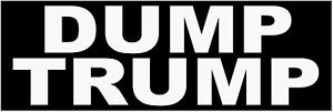 DUMP-TRUMP-BUMPER-STICKER-DECAL-ANTI-DONALD-TRUMP-PRESIDENT-2020-DEMOCRAT-BERNIE