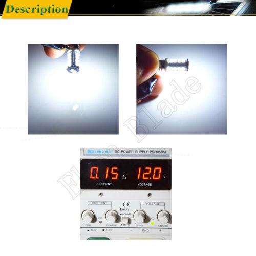 2Pcs E10 Screw LED Bulb For Flashlight Replacement Light Lamp Torch White 12V DC