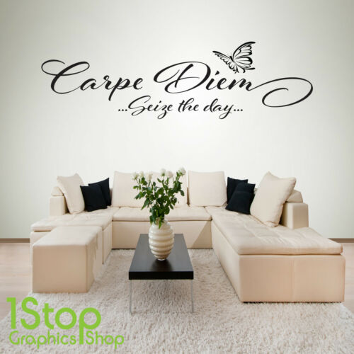 CARPE DIEM SEIZE THE DAY WALL STICKER QUOTE BEDROOM LOUNGE WALL ART DECAL X218