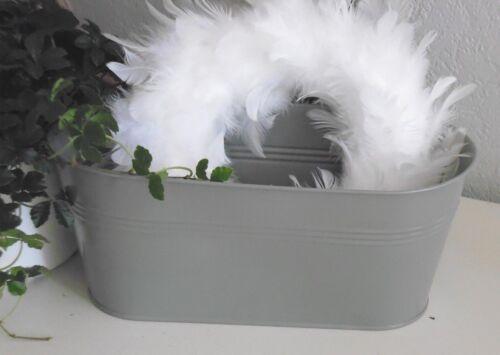 plantes coquille gris Coque maison de campagne jardiniere 28 cm baignoire métal ovale