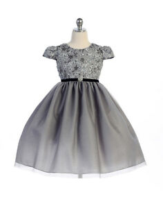 Stunning-Silver-Infant-Flower-Girl-Holiday-Party-Dress-Crayon-Kids-USA