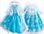 Snow Princess Elsa Dress Character Costume Kids Children Party Cosplay Christmas
