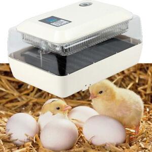 ProfesionaI-LED-Incubadora-Automatica-de-24-Huevos-con-Accesorioes-para-Pajaros