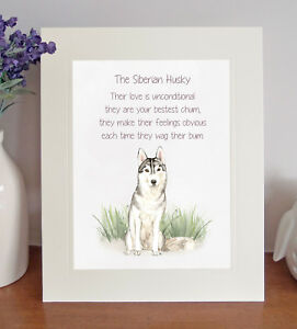 d2f7b96f Siberian Husky BESTEST CHUM Novelty Dog Poem 8 x 10 Picture/10x8 ...