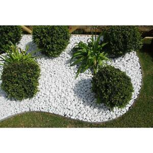 Ciottoli-MARMO-BIANCO-CARRARA-sassi-decorazione-giardino-ornamento-VARIE-MISURE