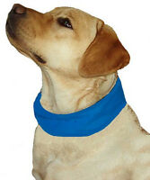 Cooling Pet Dog Collars - Variety Of Sizes And Colors