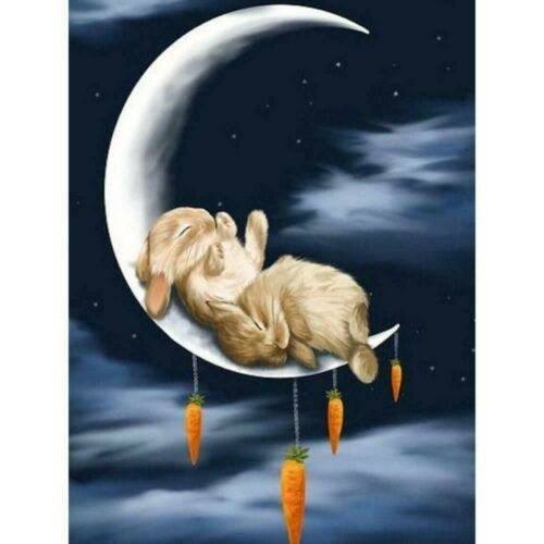 5D Diamond Painting Full Drill Embroidery Cross Stitch Kits Rabbit Moon Decors