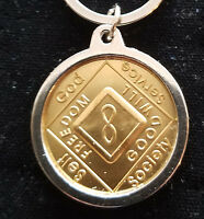 Narcotics Anonymous -na / Aa Silver Plated Medallion Holder For Key Ring Chain