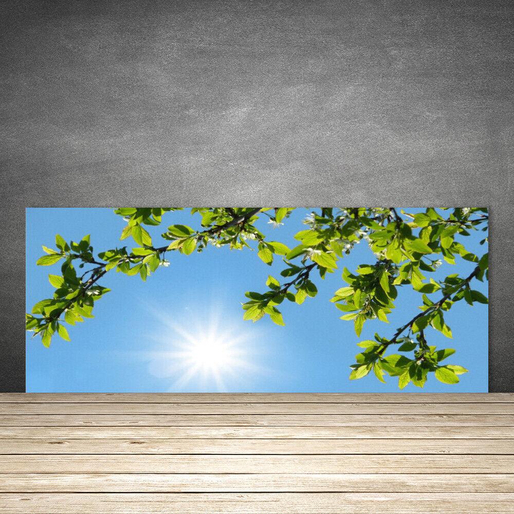 Crédence de cuisine en verre Panneau 125x50 Nature Soleil