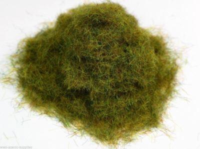 WWS Summer Static Grass 6mm 20g G,O,HO//OO,TT,N.Z Wargames Trains Scenery