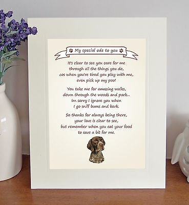 German Shorthaired Pointer Thank You FROM THE DOG Poem 8 x 10 Picture//10x8 Print