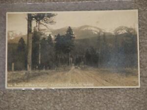 On-Park-to-Park-Road-Flathead-Valley-Mont-unused-vintage-card-RPPC