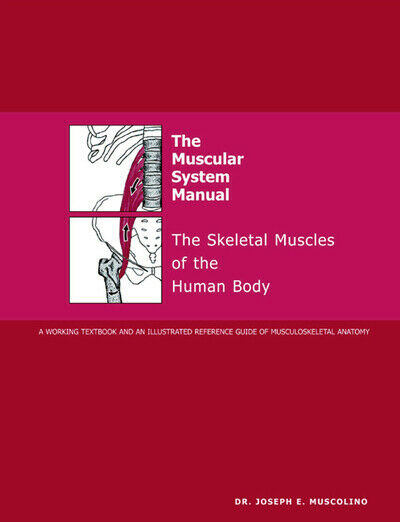 The Muscular System Manual: The Skeletal Muscles of the Human Body by Joseph E
