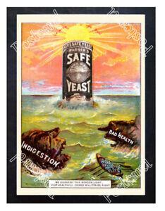 Historic-Warner-039-s-Safe-Yeast-Advertising-Postcard