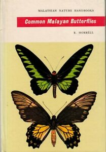 Common-Malayan-Butterflies-R-Morrell-2nd-copy