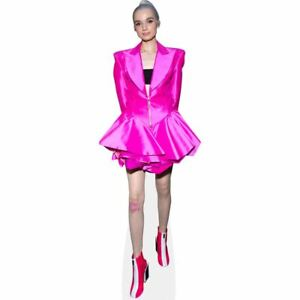 Poppy-Pink-Dress-Mini-Cutout