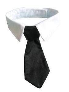 Dog-Cat-Formal-Neck-Tie-Tuxedo-Bow-Tie-and-Collar-Black