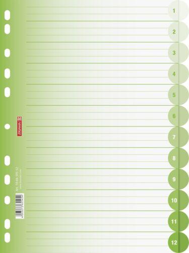 11-fach Lochung kiwi Register BRUNNEN Ringbuchregister A4 12-tlg