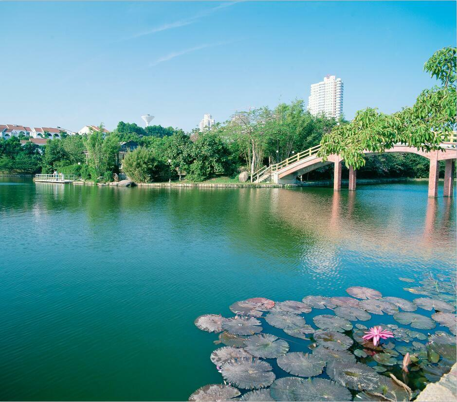 3D City Park Scenery 2993 Paper Wall Print Wall Decal Wall Deco Indoor Murals