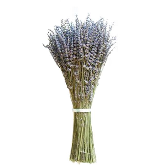 DIY Natural Lavender Dried Flower Wedding Bouquet Home Room Decor 250 Stem Bunch