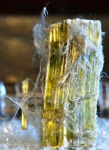 MINERAL-SPECIMEN-STUDY-2CM-BEAUTIFUL-GREEN-CHRYSOTILE-JEFFREY-MINE-QUEBEC-CANADA